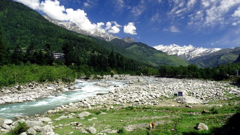 Local Sightseeing in Manali
