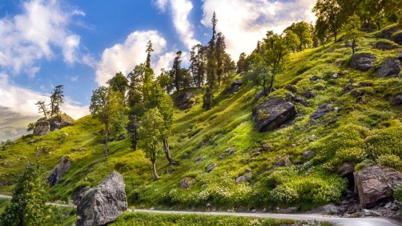 Visit Rohtang Pass